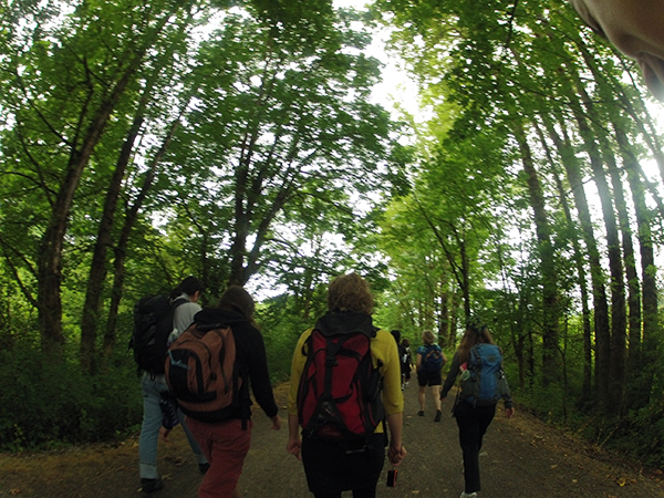 Thanks Public Art Network! | The Long Walk Seattle